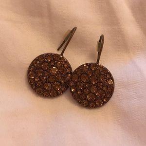 Fossil drop earrings